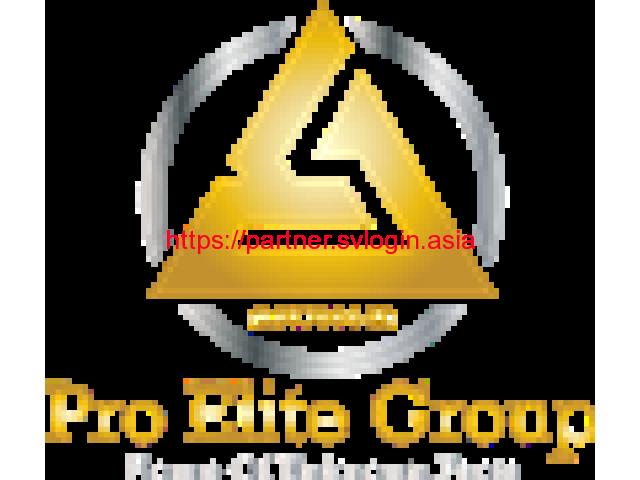 Pro Elite Group